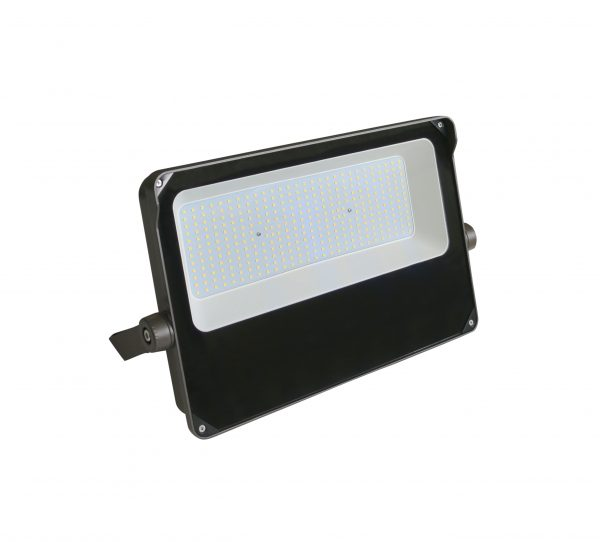 Ranger Flood Light